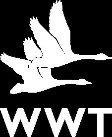 logo_WWT_275px